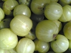 Top 10 Benefits of Amla - Health Benefits of Gooseberry