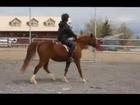 Mel Under Saddle