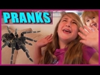 Big Scary Spider Prank - Baby Pee on Girl and Stinky Poop Pranks - Funny Video