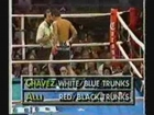 Julio Cesar Chavez Highlight