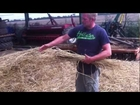 Scales Farms Thatching Straw 2012